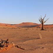 Sonnenaufgang im Sossusvlei - Namibia