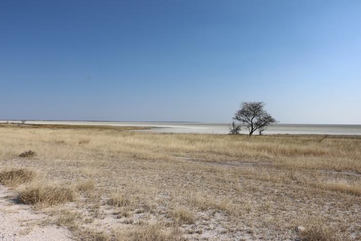 Blick auf die Etosha Salzpfanne