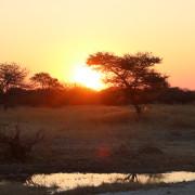 Sundowner von der Terrasse des Onguma Bush Camps