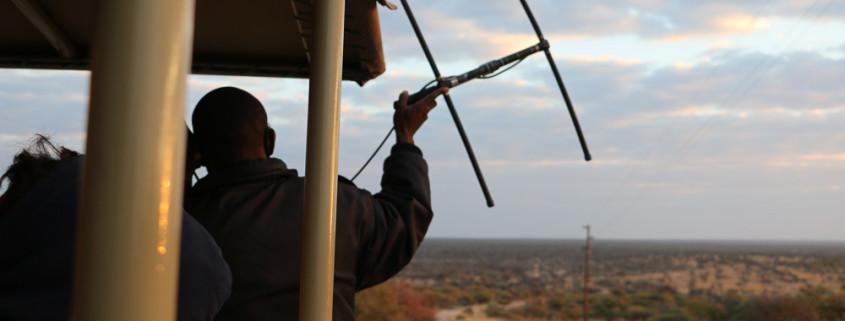 Leoparden Pirschfahrt auf der Okonjima Lodge