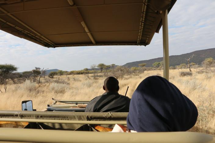 Auf der Suche nach einem Leoparden auf Okonjima