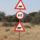 Geparden und Leoparden Roadsigns auf Okonjima