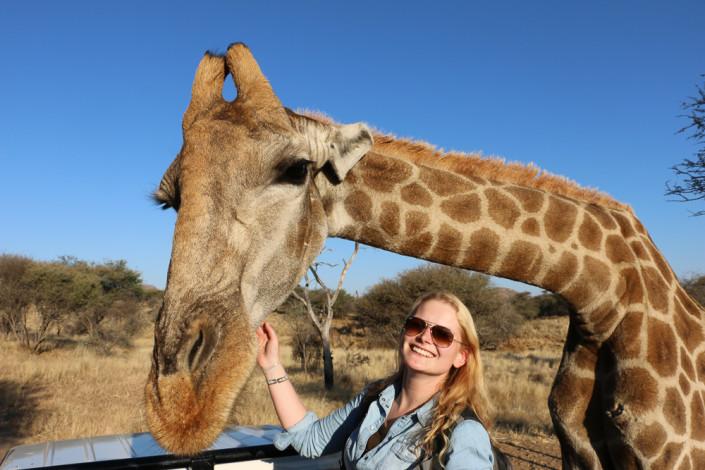 Einfach zum Knuddeln - Dodo und die Giraffe Cuppy