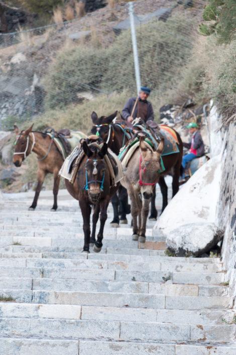 Reisebericht Santorin