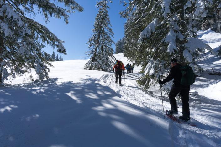 Schneeschuhwandern im Salzkammergut