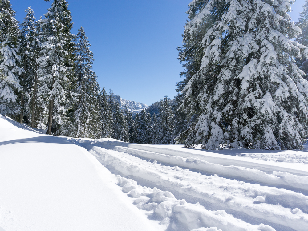 Winterlandschaft im Salzkammergut