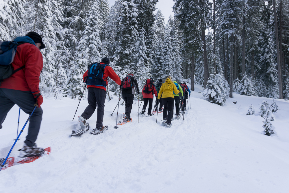 Schneeschuhwanderung Hütteneckalm
