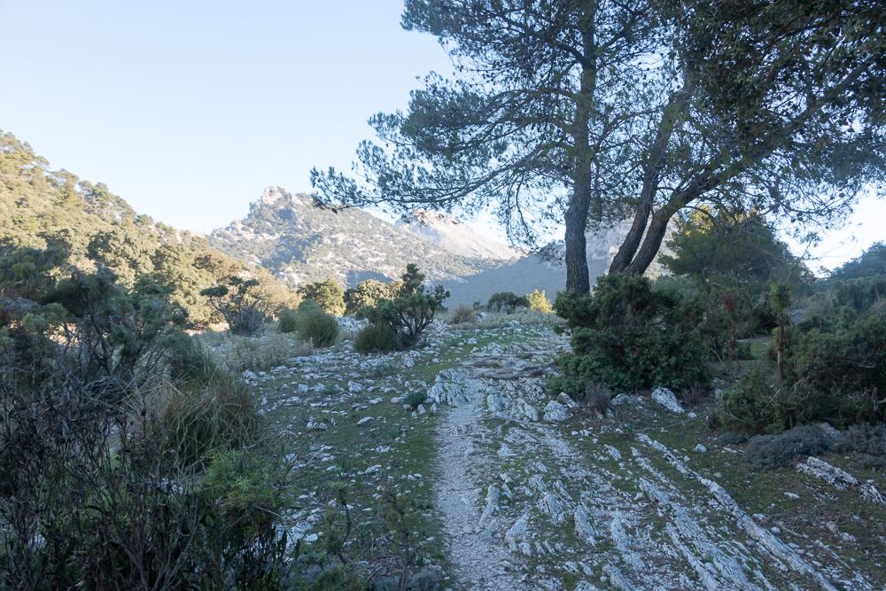Trockenmauerweg bei Tossals Verds