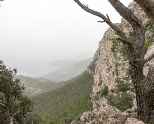 Felswand am Cami de S Arxiduc