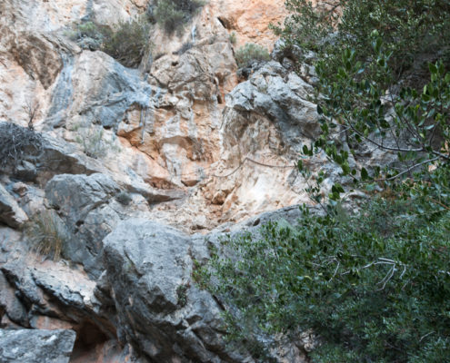 Kletterpassage Trockenmauerweg zwischen Cuber und Tossals Verds
