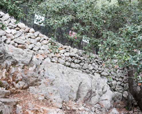 Grenzmauer zwischen Esporles und Valldemossa