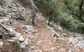 Trockenmauerweg Abstieg Deia