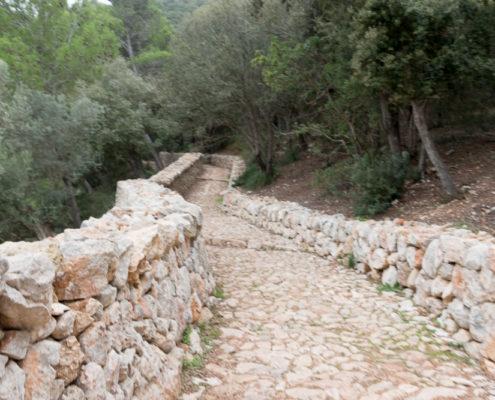typischer Trockenmauerweg Mallorca
