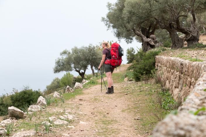 Trockenmauerweg zwischen Estellencs und Banyabulfar