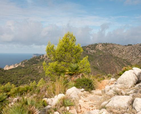 Passhöhe Coll des Vent auf Mallorca
