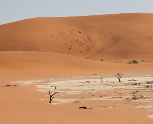 Namibia Roadtrip Deadvlei