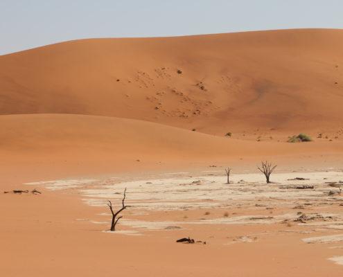 Namibia Roadtrip Deadvlei