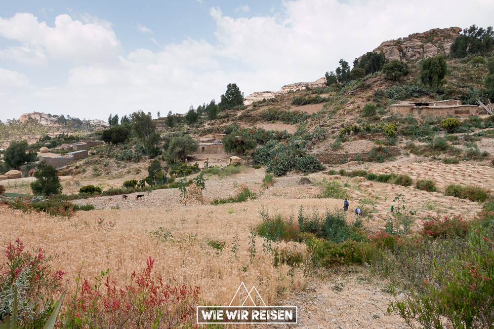 Landschaft in der Nähe der Felsenkirche Medhane Alem Adi Kasho