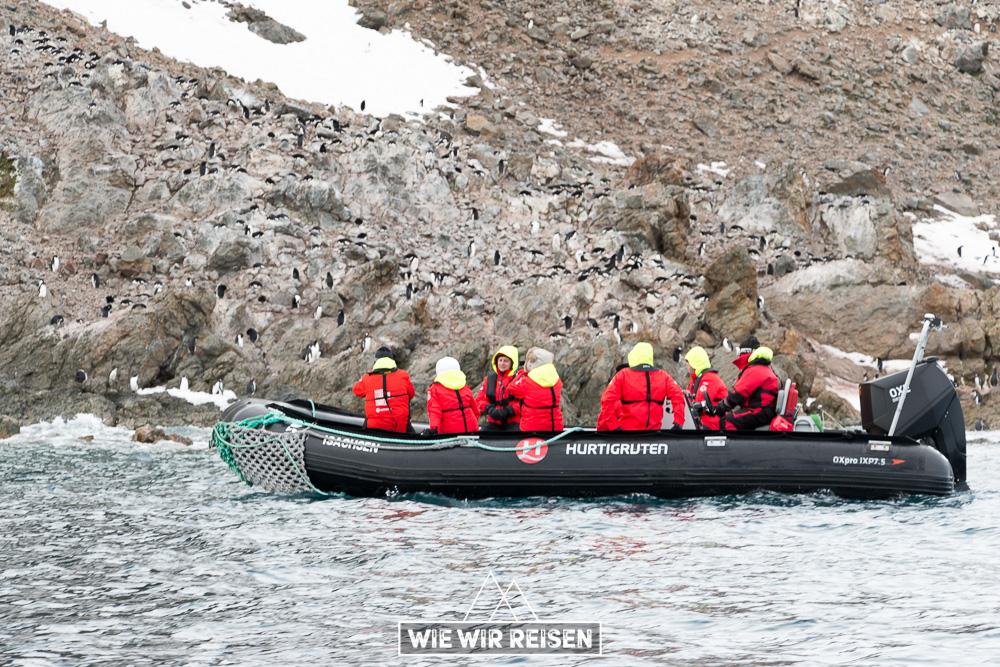 Cruises zu den Adelie Pinguine im Antarctic Sound
