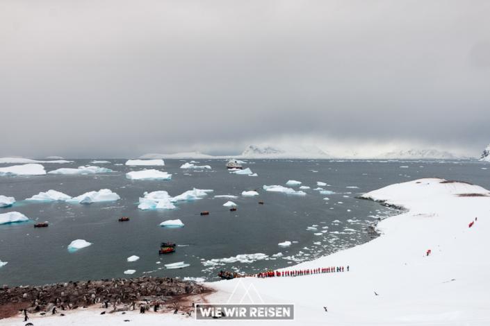 Eisberge in der Bucht von Cuverville Island Antarktis