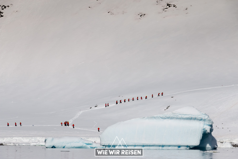 Hurtigruten Touristen schlängeln sich der Berg hinauf zu den Pinguin Kolonien