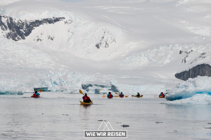 Kayaktour von Hurtigruten in der Antarktis