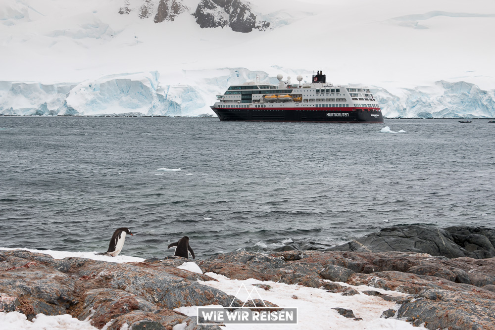 MS Midnatsol in der Bucht vor Gonzales Videla in der Antarktis